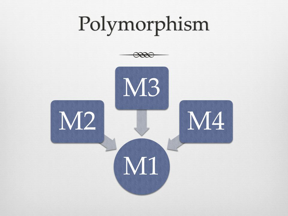 Polymorphism M1 M2M3M4