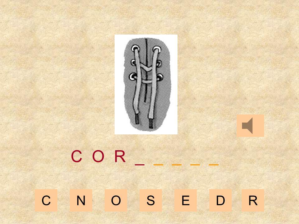 CNOSEDR C O _ _ _ _ _ _