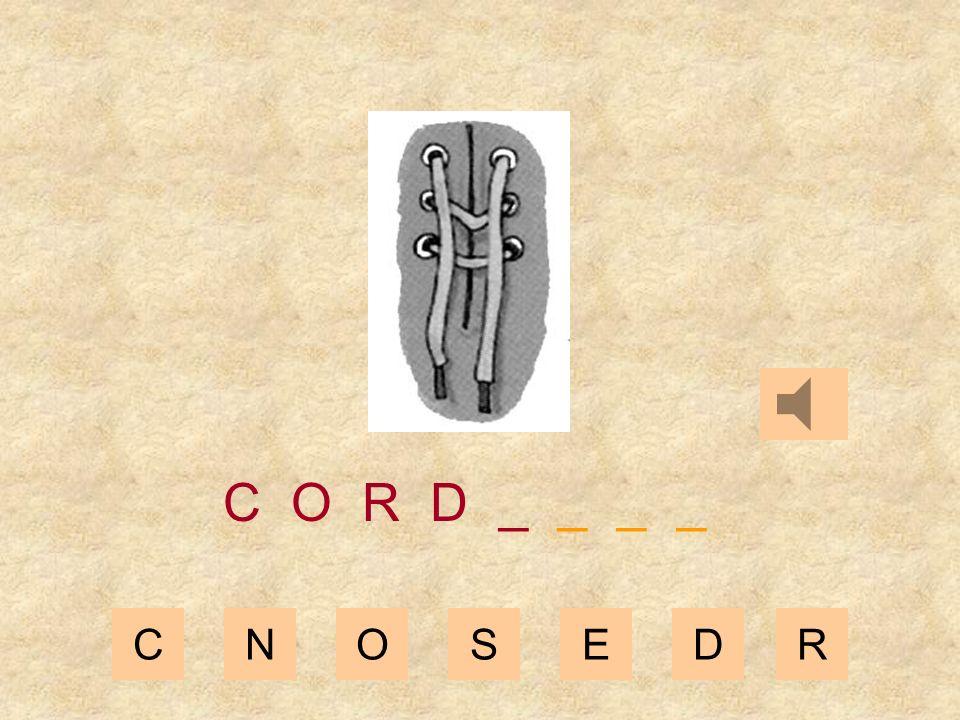 CNOSEDR C O R _ _ _ _ _