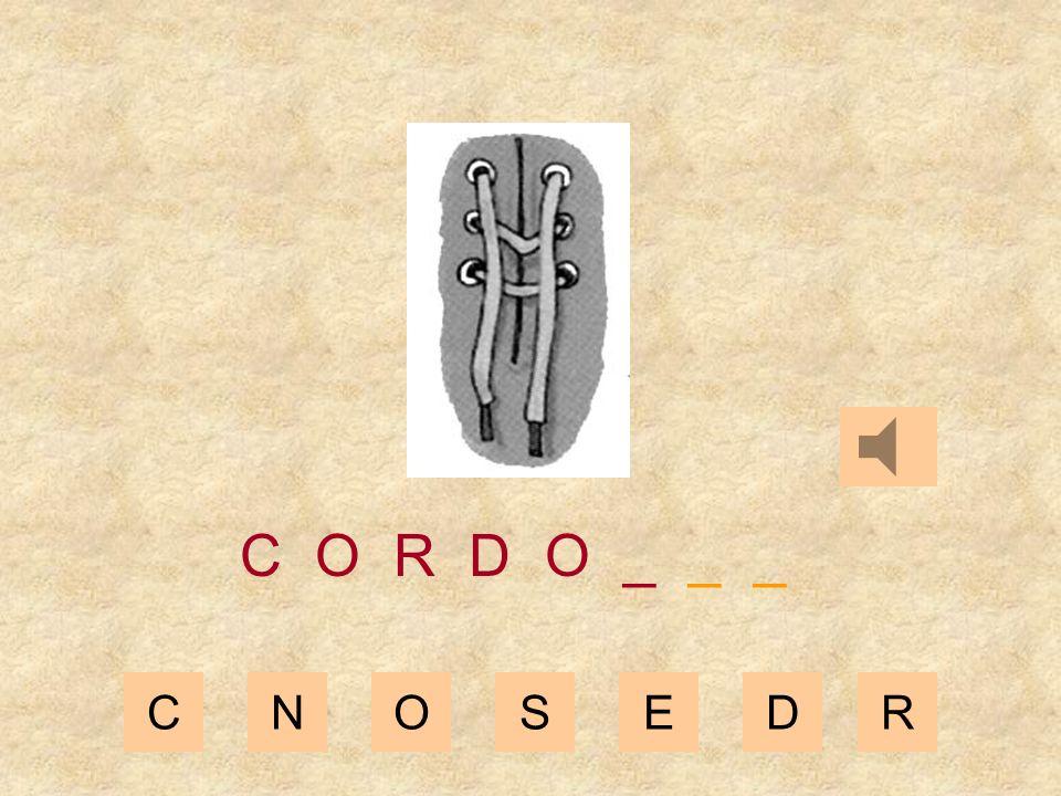 CNOSEDR C O R D _ _ _ _