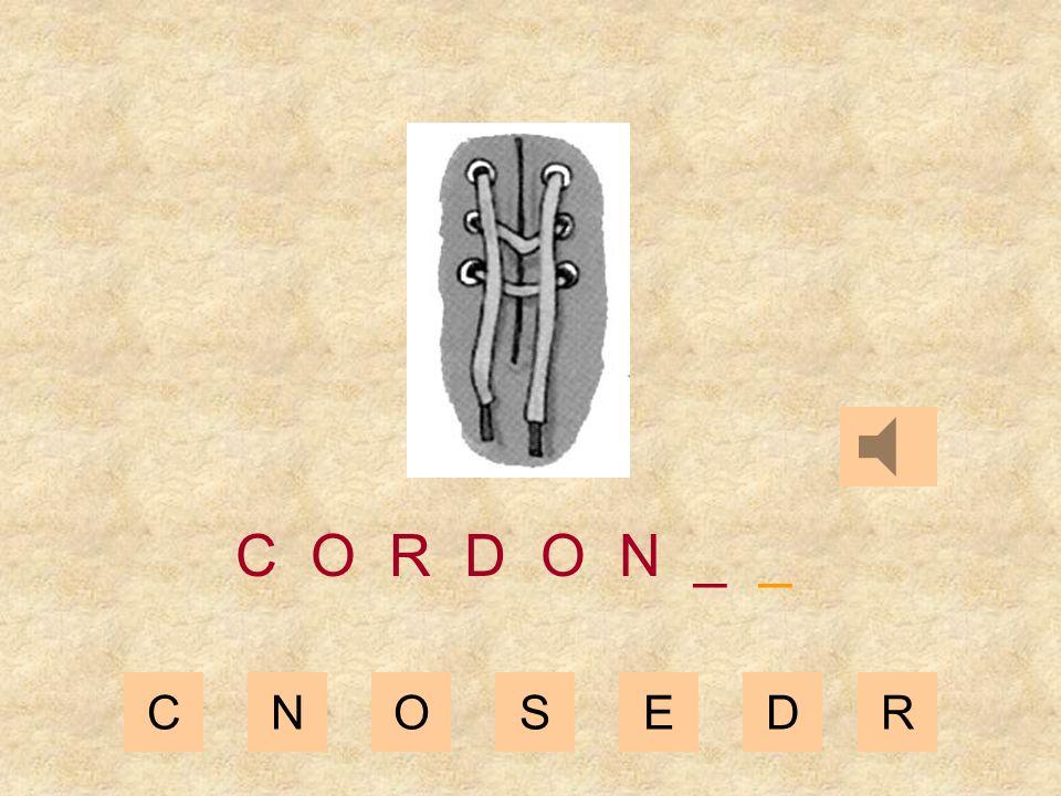 CNOSEDR C O R D O _ _ _