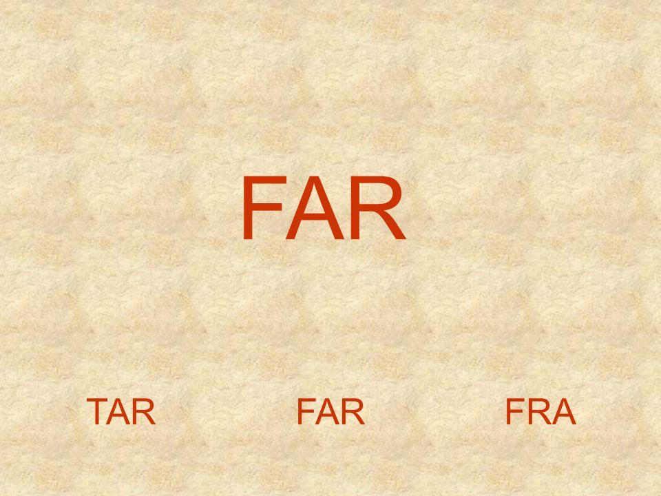 FLA LAFFAL