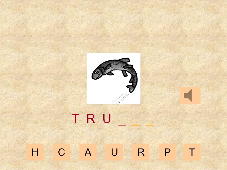 HCAURPT T R _ _ _ _