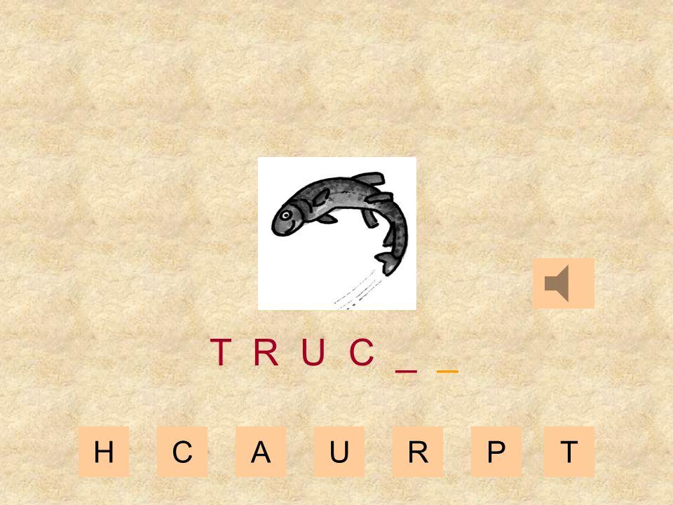 HCAURPT T R U _ _ _