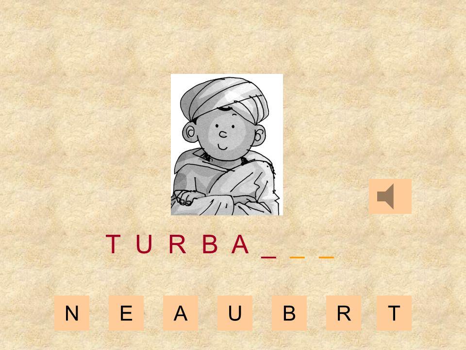 NEAUBRT T U R B _ _ _ _