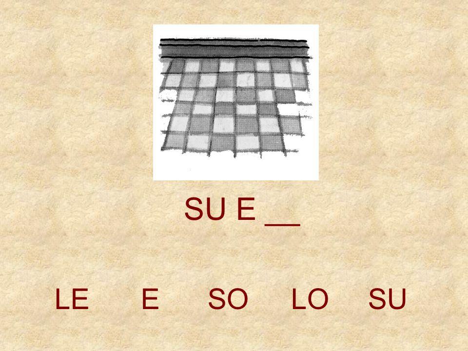 LEESOLOSU SU _ __