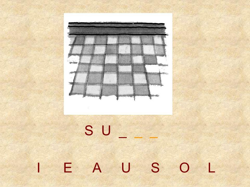 IEAUSOL S _ _ _ _