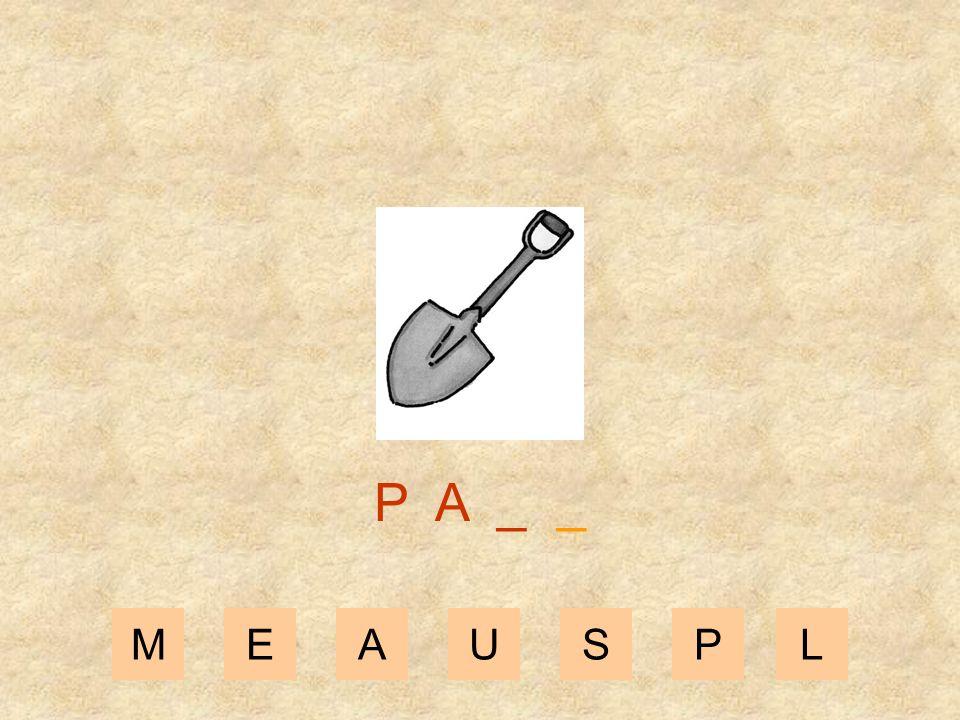 MEAUSPL P _ _ _