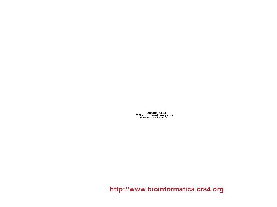Maistas: taking splicing into account http://www.bioinformatica.crs4.org