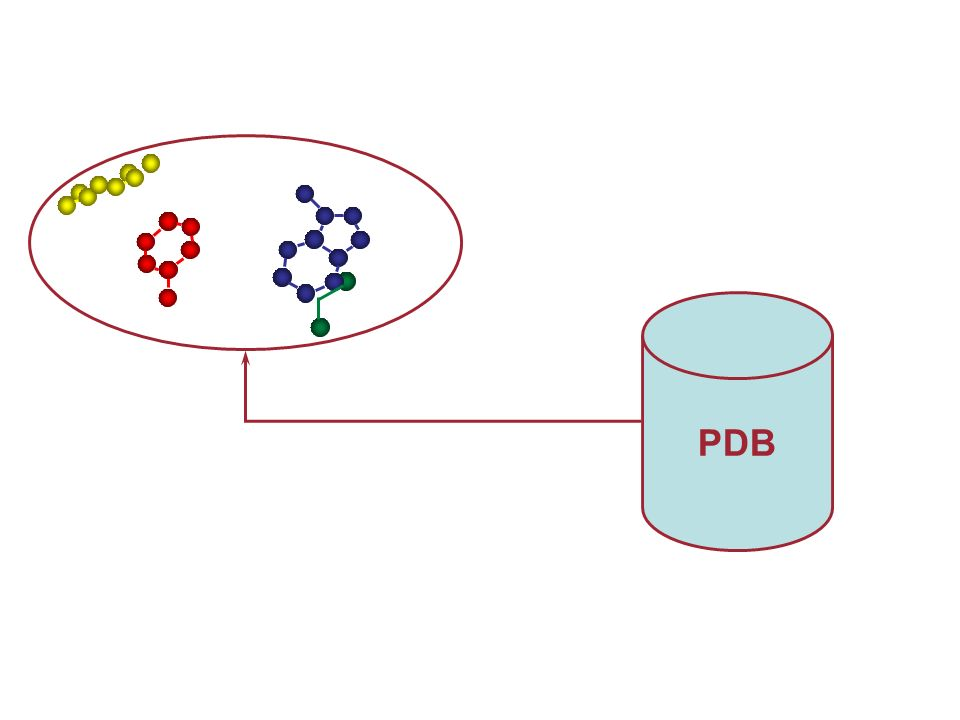 ANTIBODIES: A different story PDB