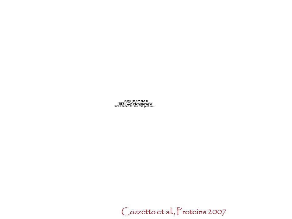 Cozzetto et al., Proteins 2007 Protein structure Quality prediction: The casp initiative