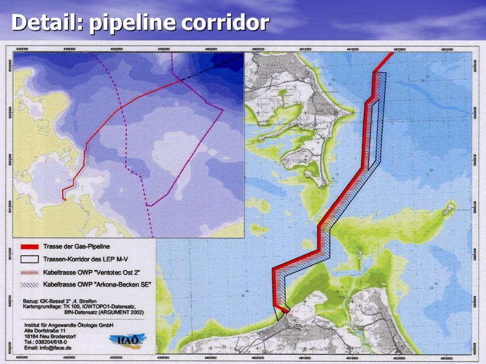 Detail: pipeline corridor