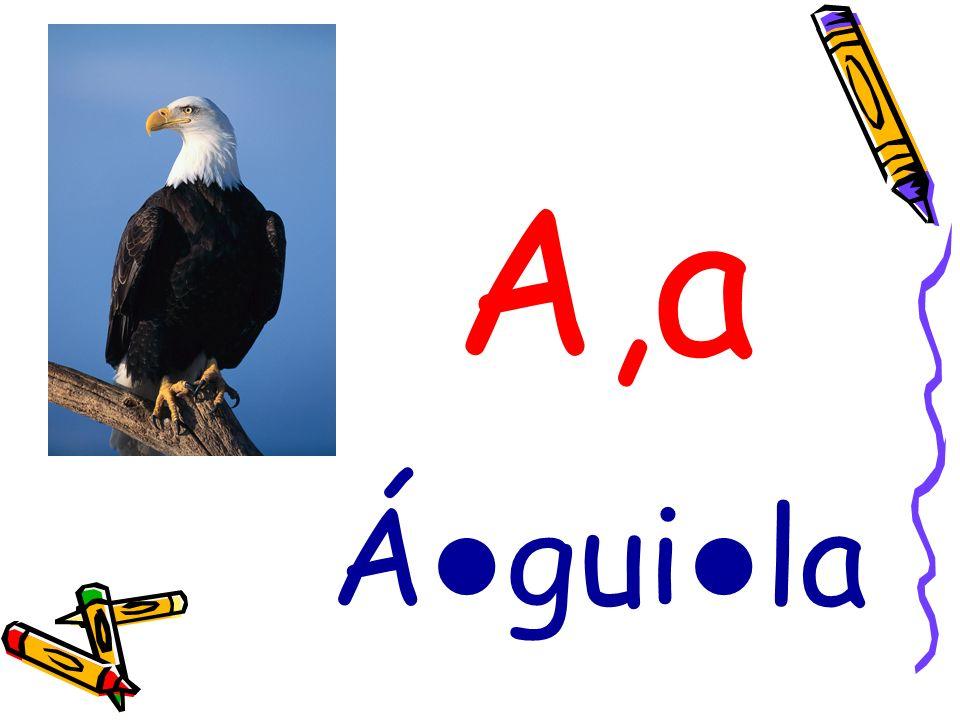 A,a Á gui la