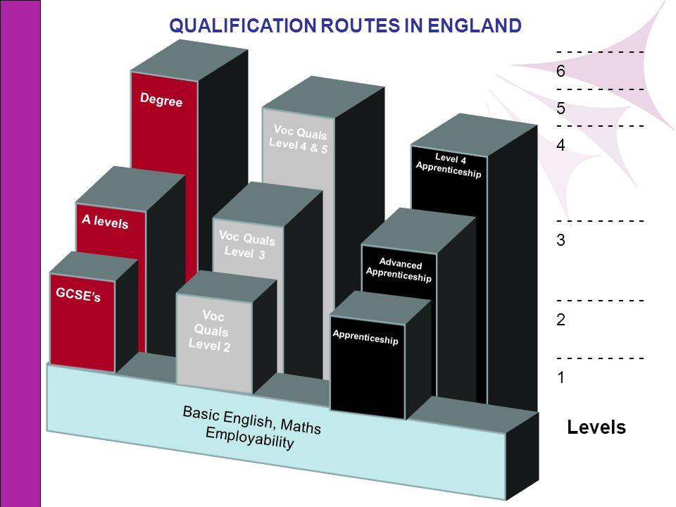 A levels Voc Quals Level 3 Advanced Apprenticeship Voc Quals Level 2 GCSEs Apprenticeship Voc Quals Level 4 & 5 Level 4 Apprenticeship Basic English,