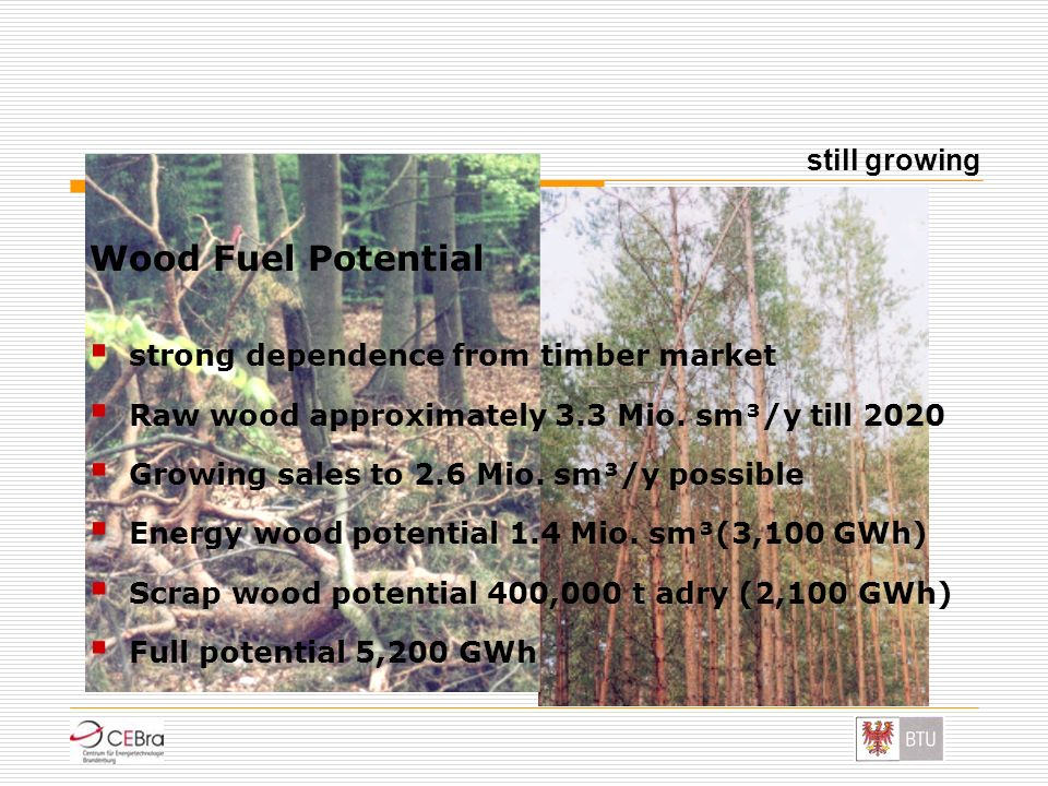 Wood Fuel Potential strong dependence from timber market Raw wood approximately 3.3 Mio. sm³/y till 2020 Growing sales to 2.6 Mio. sm³/y possible Ener