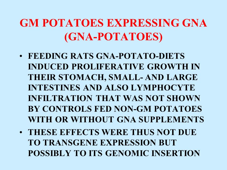 GM POTATOES EXPRESSING GNA (GNA-POTATOES) FEEDING RATS GNA-POTATO-DIETS INDUCED PROLIFERATIVE GROWTH IN THEIR STOMACH, SMALL- AND LARGE INTESTINES AND