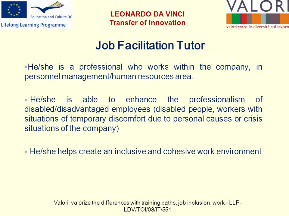 Job Facilitation Tutor He/she is a professional who works within the company, in personnel management/human resources area.