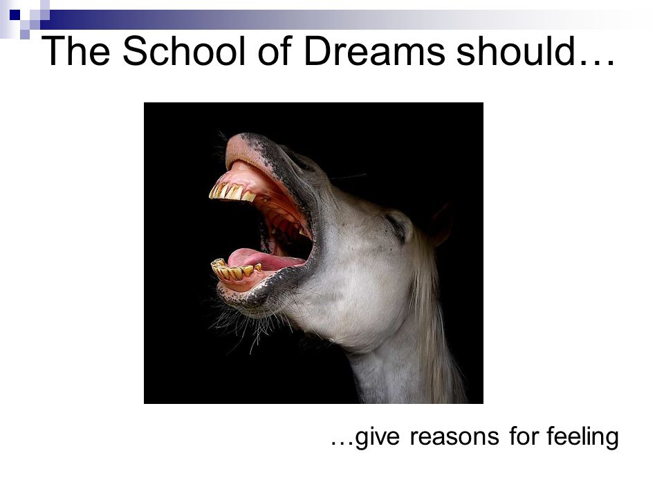 The School of Dreams should… …respect individuality