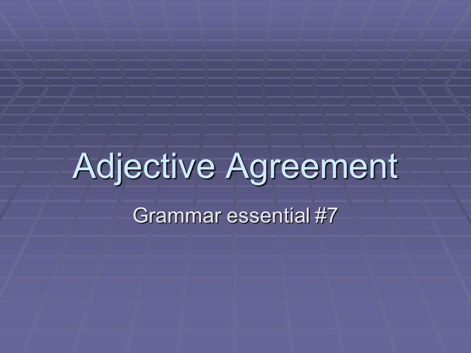 Adjective Agreement Grammar essential #7