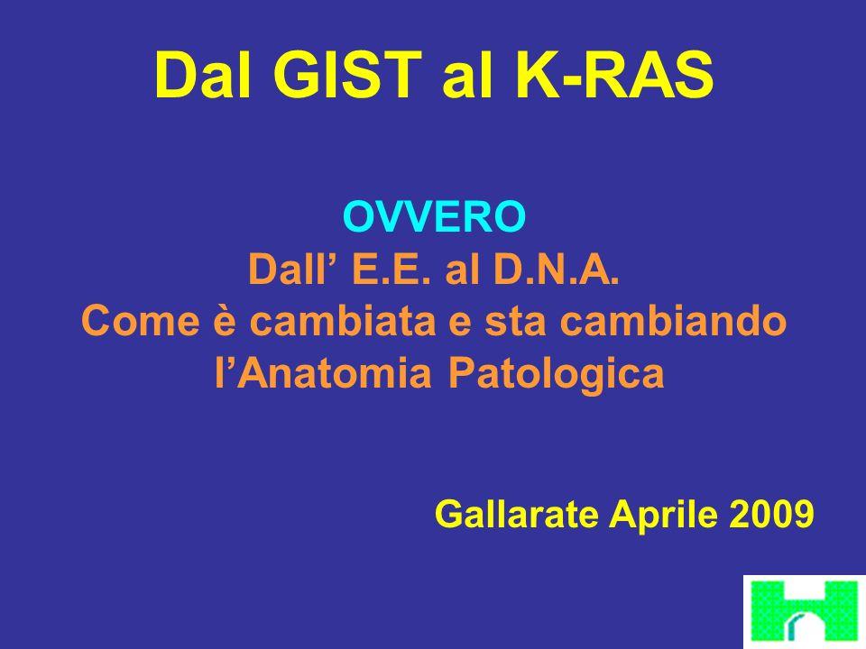 Dal GIST al K-RAS OVVERO Dall E.E. al D.N.A. Come è cambiata e sta cambiando lAnatomia Patologica Gallarate Aprile 2009