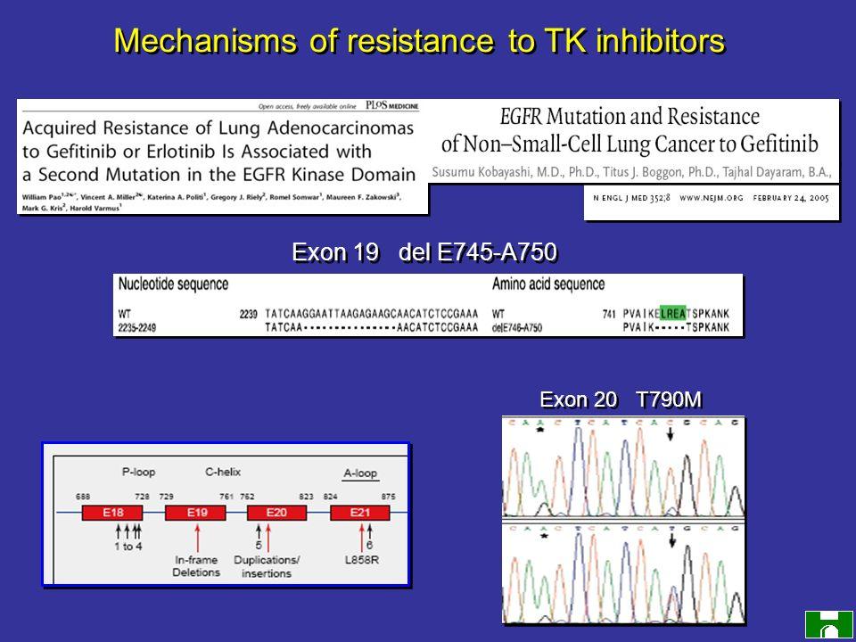 Exon 20 T790M Mechanisms of resistance to TK inhibitors Exon 19 del E745-A750