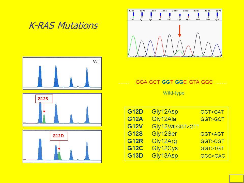 K-RAS Mutations …… GGA GCT GGT GGC GTA GGC …… Wild-type G12D G12S WT G12DGly12Asp GGT>GAT G12AGly12Ala GGT>GCT G12VGly12Val GGT>GTT G12SGly12Ser GGT>A