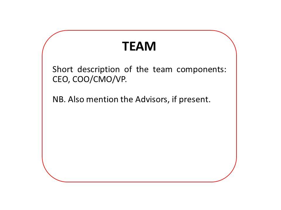 TEAM Short description of the team components: CEO, COO/CMO/VP.