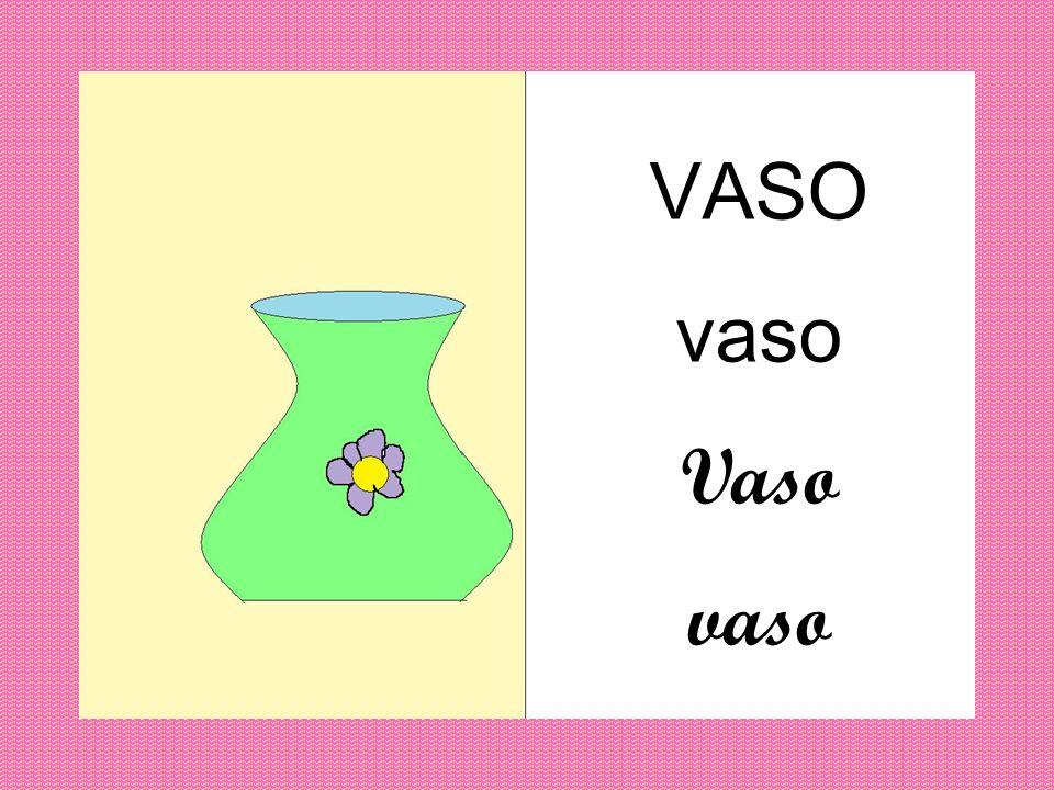 VASO vaso Vaso vaso