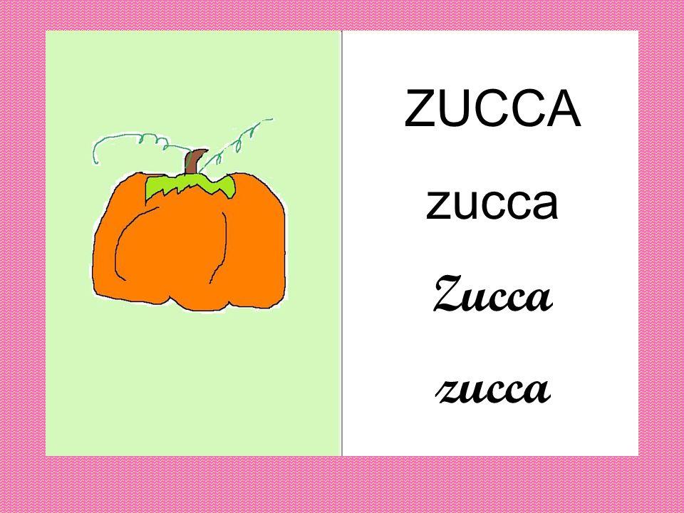 ZUCCA zucca Zucca zucca