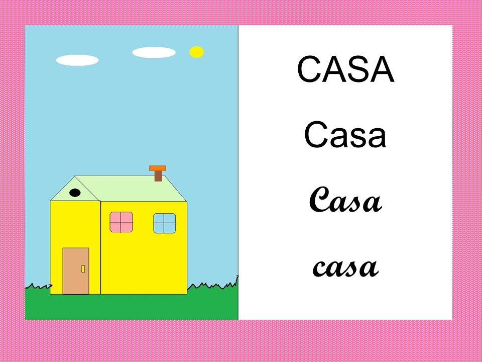 CASA Casa casa