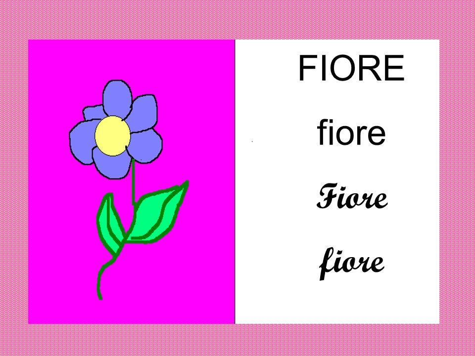 FIORE fiore Fiore fiore