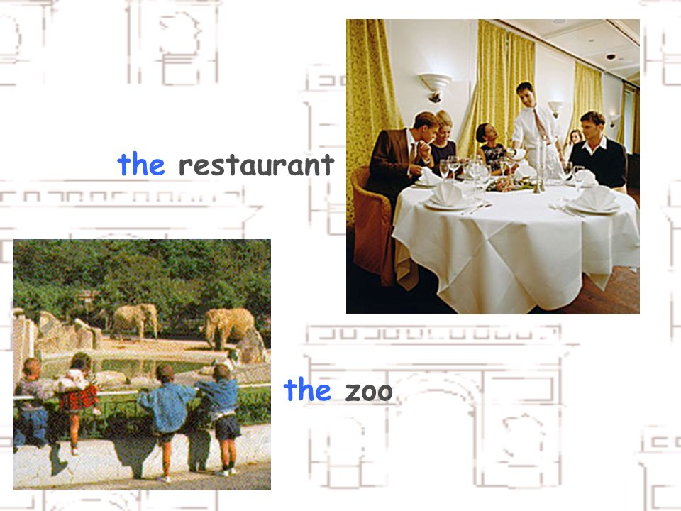 the restaurant the zoo