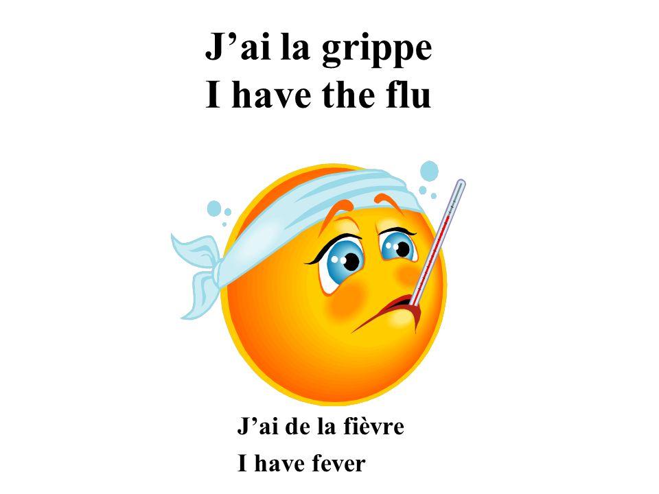 Jai la grippe I have the flu Jai de la fièvre I have fever