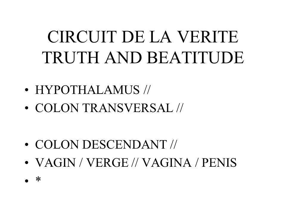 CIRCUIT DE LA VERITE TRUTH AND BEATITUDE HYPOTHALAMUS // COLON TRANSVERSAL // COLON DESCENDANT // VAGIN / VERGE // VAGINA / PENIS *