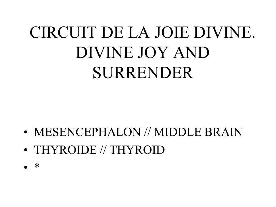 CIRCUIT DE LA JOIE DIVINE.