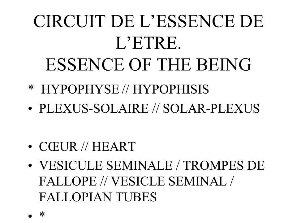 CIRCUIT DE LESSENCE DE LETRE.