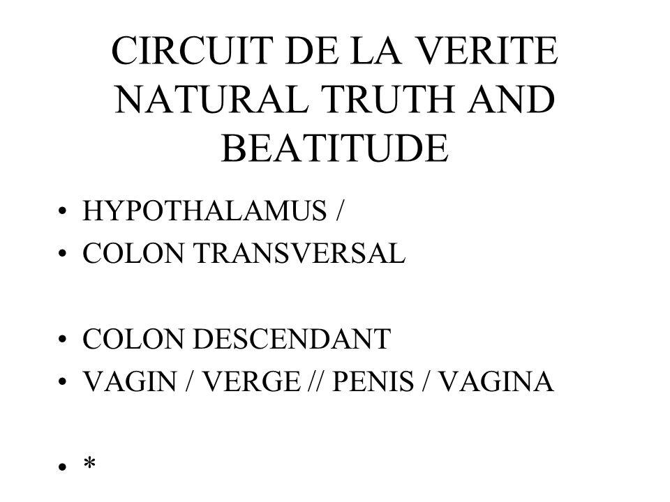CIRCUIT DE LA VERITE NATURAL TRUTH AND BEATITUDE HYPOTHALAMUS / COLON TRANSVERSAL COLON DESCENDANT VAGIN / VERGE // PENIS / VAGINA *