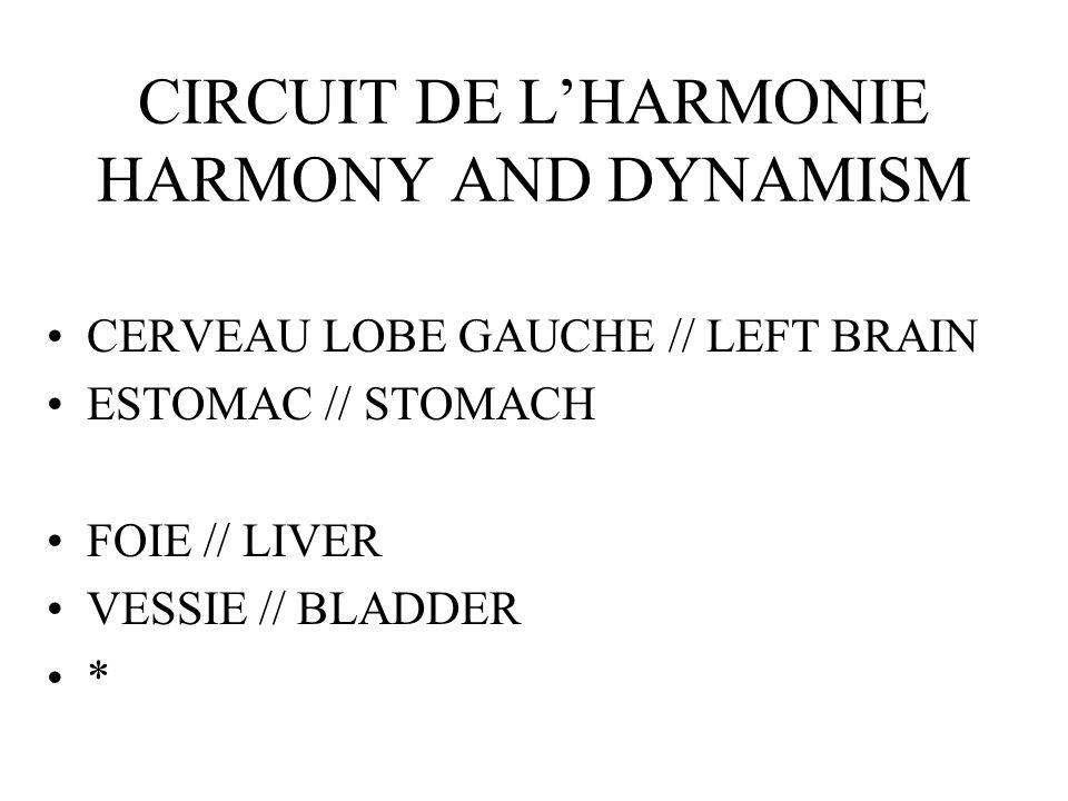 CIRCUIT DE LHARMONIE HARMONY AND DYNAMISM CERVEAU LOBE GAUCHE // LEFT BRAIN ESTOMAC // STOMACH FOIE // LIVER VESSIE // BLADDER *