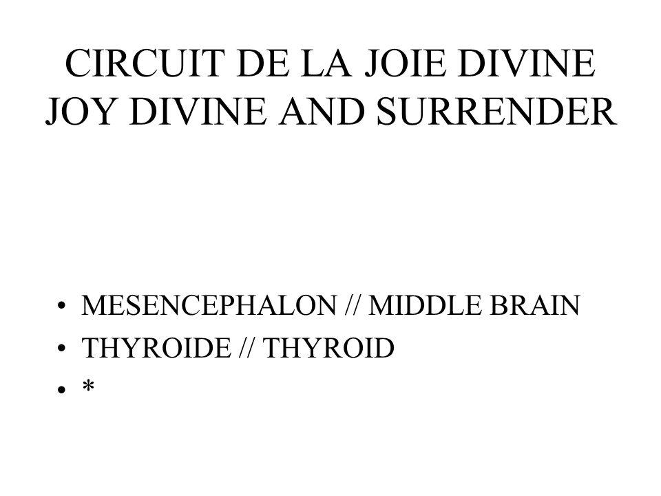 CIRCUIT DE LA JOIE DIVINE JOY DIVINE AND SURRENDER MESENCEPHALON // MIDDLE BRAIN THYROIDE // THYROID *