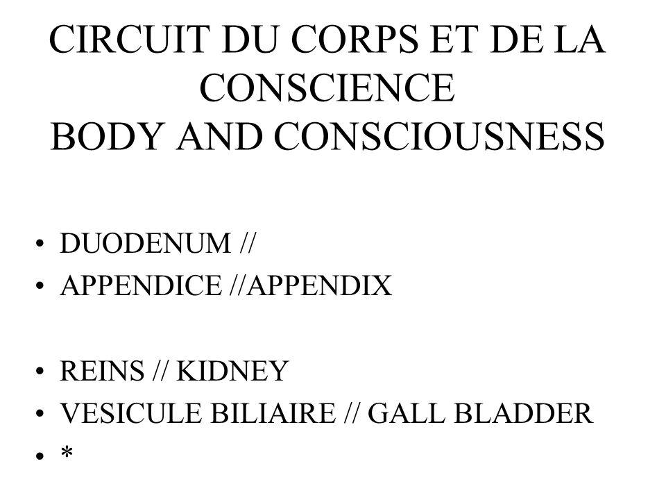 CIRCUIT DU CORPS ET DE LA CONSCIENCE BODY AND CONSCIOUSNESS DUODENUM // APPENDICE //APPENDIX REINS // KIDNEY VESICULE BILIAIRE // GALL BLADDER *