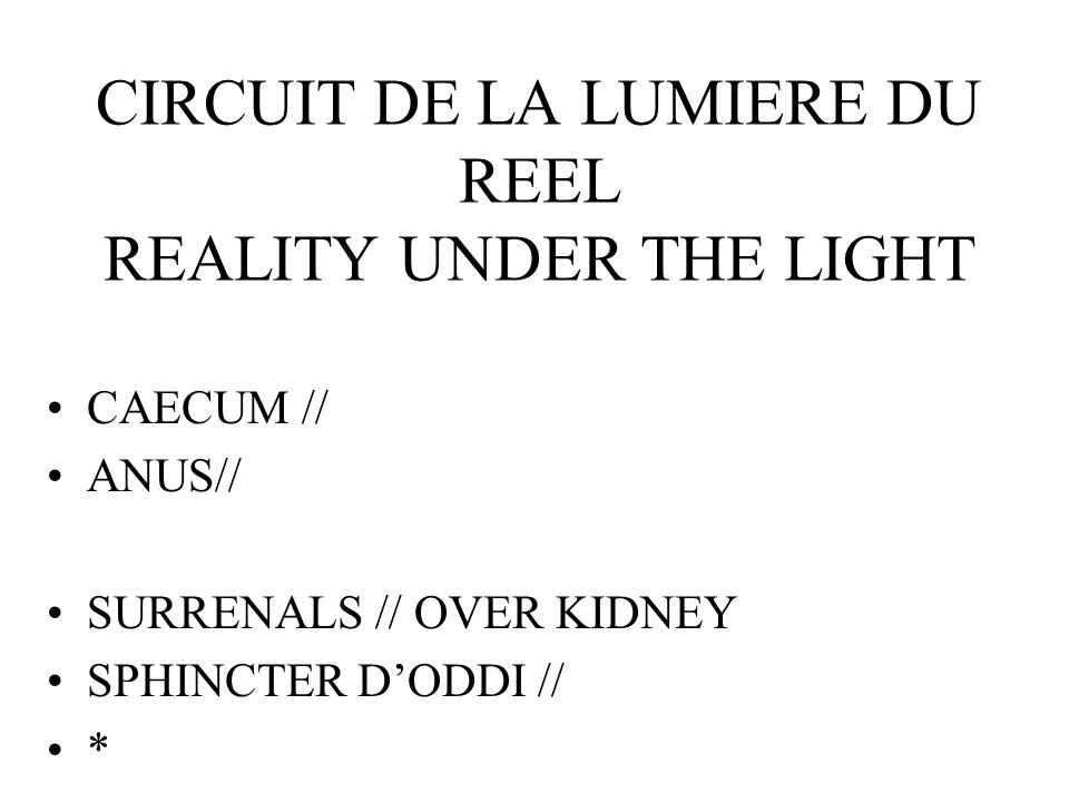 CIRCUIT DE LA LUMIERE DU REEL REALITY UNDER THE LIGHT CAECUM // ANUS// SURRENALS // OVER KIDNEY SPHINCTER DODDI // *