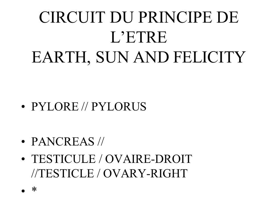 CIRCUIT DU PRINCIPE DE LETRE EARTH, SUN AND FELICITY PYLORE // PYLORUS PANCREAS // TESTICULE / OVAIRE-DROIT //TESTICLE / OVARY-RIGHT *