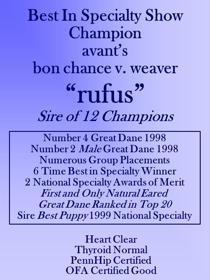 Best In Specialty Show Champion avants bon chance v. weaver rufus Sire of 12 Champions Number 4 Great Dane 1998 Number 2 Male Great Dane 1998 Numerous