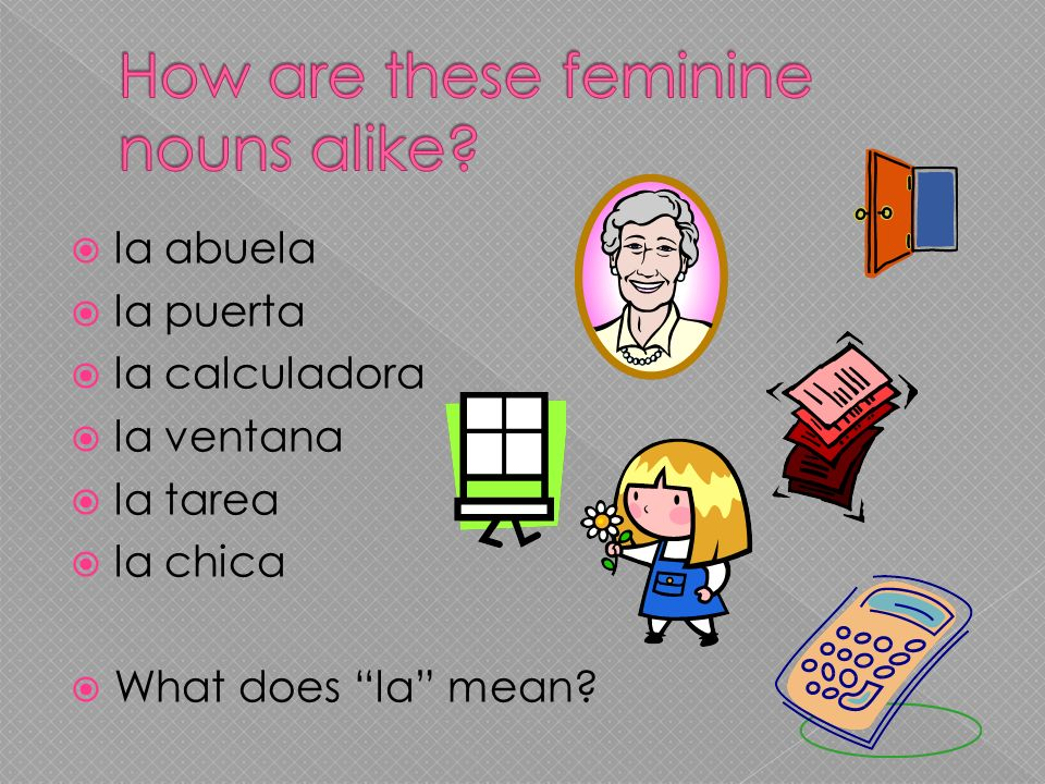 la abuela la puerta la calculadora la ventana la tarea la chica What does la mean?