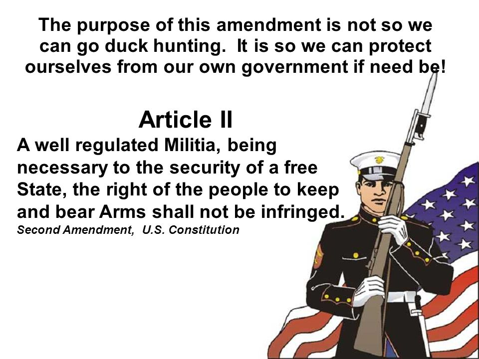The purpose of this amendment is not so we can go duck hunting.