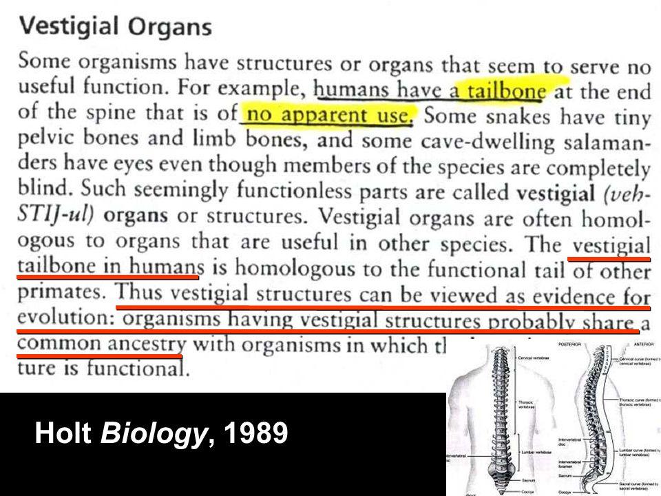 Holt Biology 1989 (human tailbone) Holt Biology, 1989
