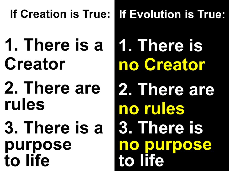 If Creation is True: If Evolution is True: 1. There is a Creator 1.
