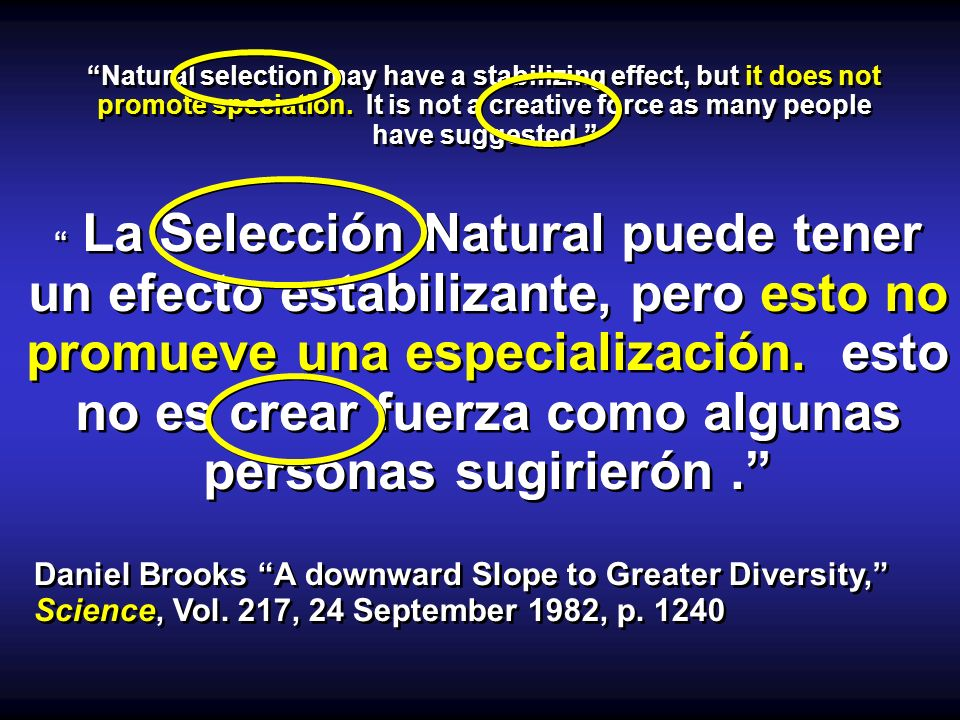 Natural selection may have a stabilizing effect, but it does not promote speciation.