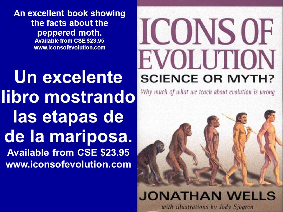 An excellent book showing the facts about the peppered moth. Available from CSE $23.95 www.iconsofevolution.com Un excelente libro mostrando las etapa