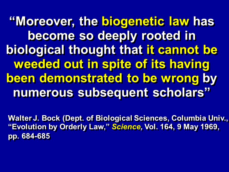 X X Moreover, the biogenetic law has become so deeply rooted in biological thought that it cannot be weeded out in spite of its having been demonstrated to be wrong by numerous subsequent scholars Walter J.